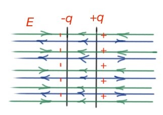Figure 21. Electric field lines for a plate capacitor