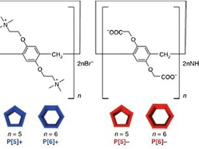 Self-sorting through molecular geometries