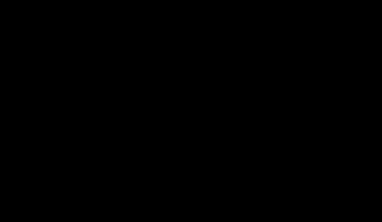 Short-circuited half wavelength line resonator