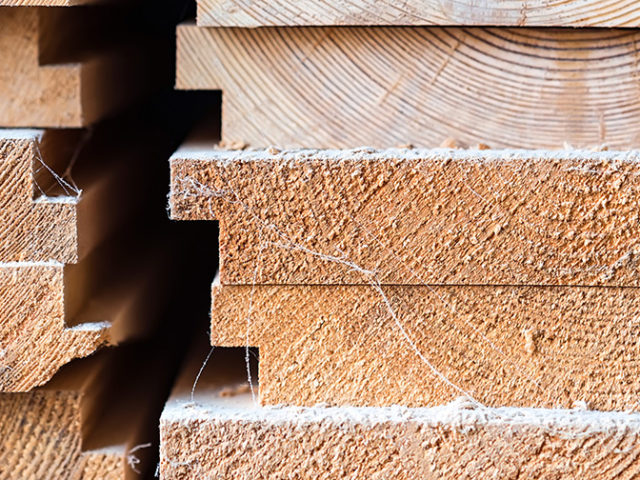 Wood is s new material for electrodes for wearables