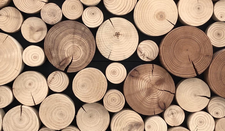 Wood as a mini generator
